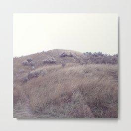 Landscape 3 Metal Print