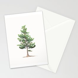 Young Sierra Lodgepole Pine Stationery Cards