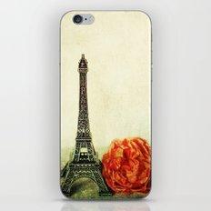Textured Paris StillLife  iPhone & iPod Skin