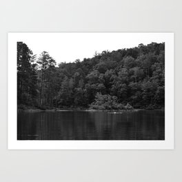 Lake Swimmers Art Print