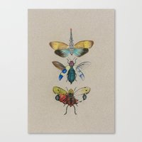 insects Canvas Prints featuring insects by Julia Tyroller