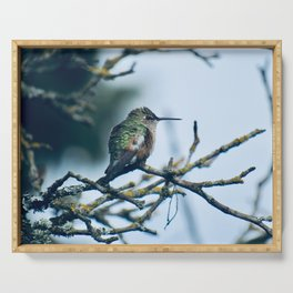Ruffled Hummingbird Serving Tray
