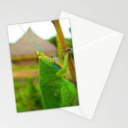 Grasshopper Stationery Cards