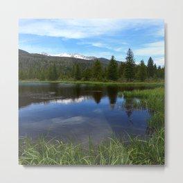 Peaceful Beaver Ponds View Metal Print