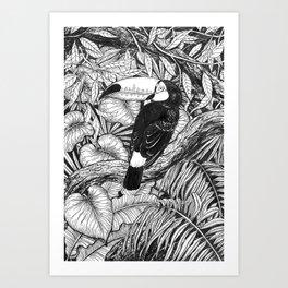 Toucan tropical garden Art Print