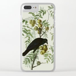Vintage Crow Illustration Clear iPhone Case