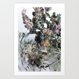 Floating Roots Colour Ed. 2 Art Print
