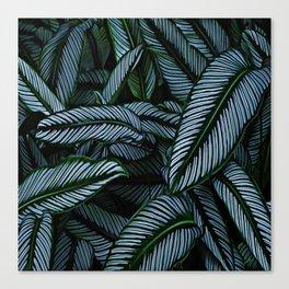 Night Tropic 5 Canvas Print