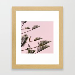 HERONS  Framed Art Print