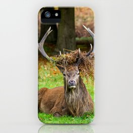 Majestic. iPhone Case