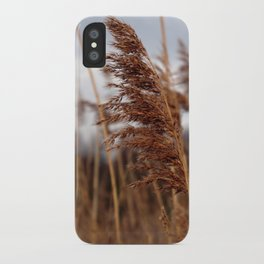 stay in the wind. iPhone Case