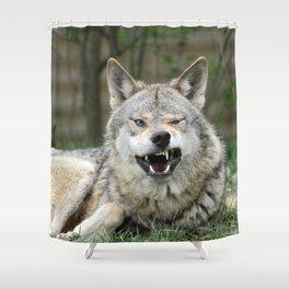 Wolf_012_by_JAMFoto Shower Curtain