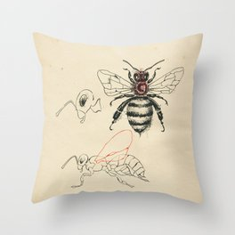 Cabinet of Curiosities No.6 Throw Pillow