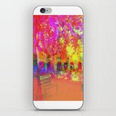 Multiplicitous extrapolatable characterization. 19 iPhone & iPod Skin