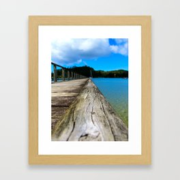 NZ Framed Art Print