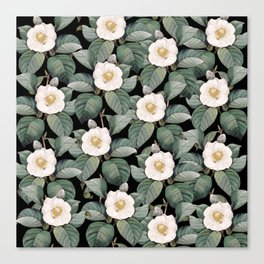 White Camellia Flowers On Black Canvas Print