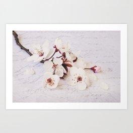 Nostalgic Cherry Blossom Art Print