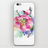 cherry blossom iPhone & iPod Skins featuring Cherry Blossom by A cup of grey tea
