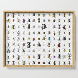 Beetlemania / Get your entomology on! Serving Tray