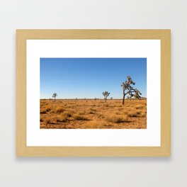 Joshua Tree Landscape 001 Framed Art Print
