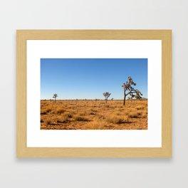 Joshua Tree Landscape 001 Framed Art Print