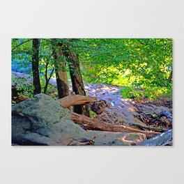 Stone Dragon Canvas Print