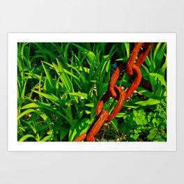chain + rust Art Print