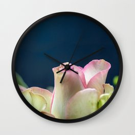 Softness of a rose Wall Clock