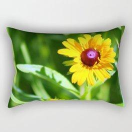 Brown Eyes 2 Rectangular Pillow