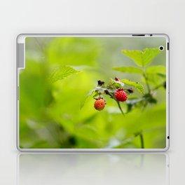 Raspberry Sunrise Laptop & iPad Skin