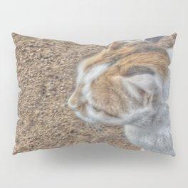 Cute Cat Collection 1 Pillow Sham