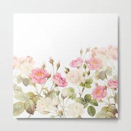 Vintage & Shabby Chic - Sepia Roses Flower Garden Metal Print