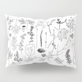 Botanical Drawings by young school kids artists, profits are donated to The Ivy Montessori School Pillow Sham