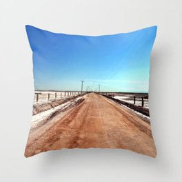 Road to Mud Pots Throw Pillow