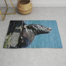 California Sea Lion Rug