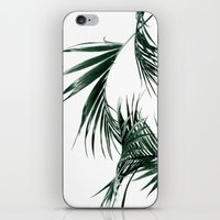 palms iPhone & iPod Skins featuring Palms by Rachel De Vita