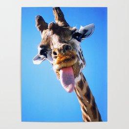 Giraffe Close Poster