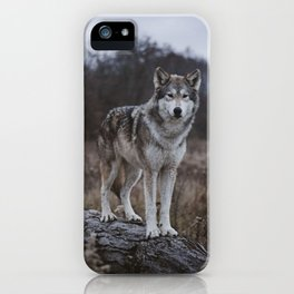 Wolf on Log iPhone Case