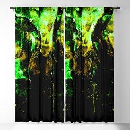 tarantula fangs wsdtg Blackout Curtain