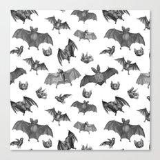 Batty Bats Canvas Print