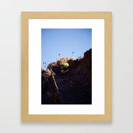 Succulent Cliff Framed Art Print