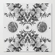 xii i iii iv  Canvas Print