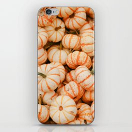 Pumpkins in the Fall iPhone Skin