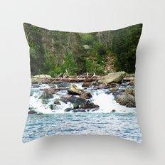 Grand Teton National Park landscape photography.  Throw Pillow