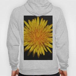Dandelion Flower Hoody