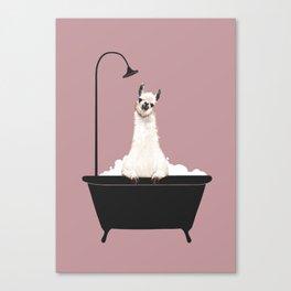 Llama in Bathtub Canvas Print
