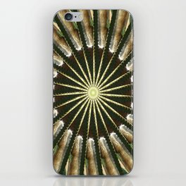 Cactus Garden Kaleidoscope 11 iPhone Skin