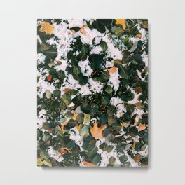 Leaves and Snow Metal Print