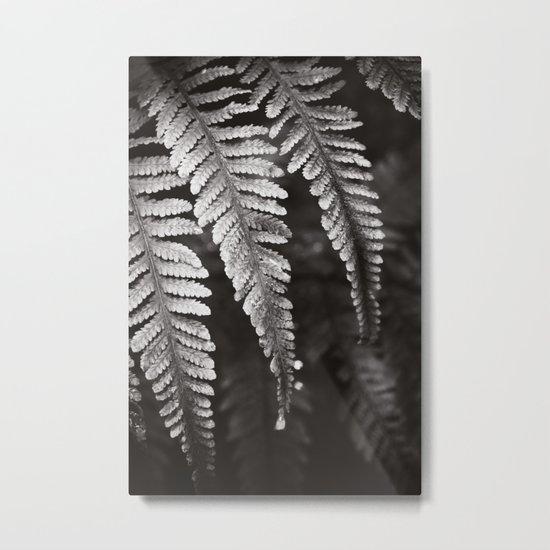Secret Garden ~ No.8 Metal Print