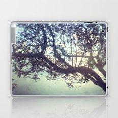 Sunset trees Laptop & iPad Skin